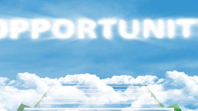 English to Dutch Translator Career Opportunities